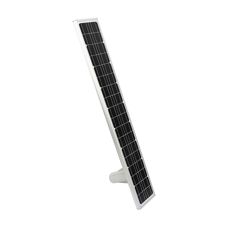 50W Solar Motion Sensor Street Light